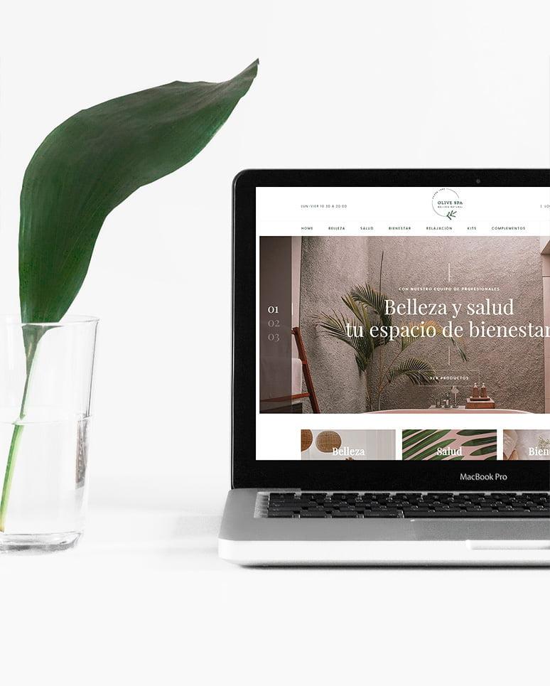 pagina diseno web2 - Diseño web
