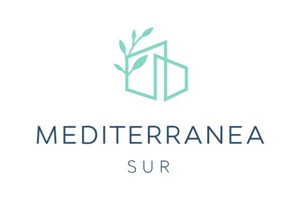 logo-ms1