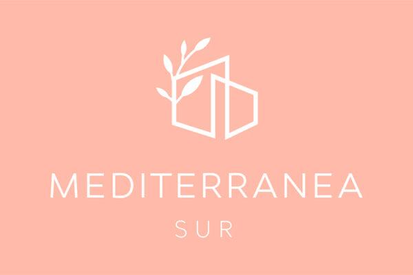 logo-ms3