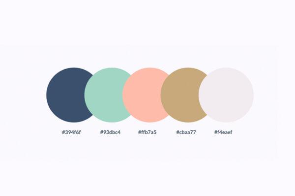paleta-de-colores-MS
